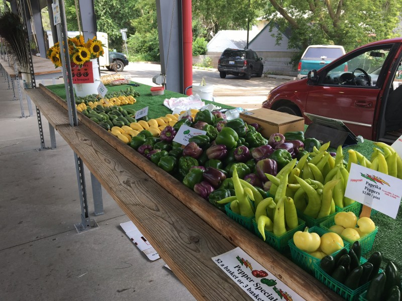 Market musings ellens 39 acres turning heads with bright for Charlie s fish market