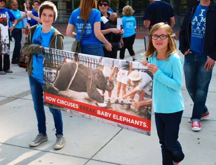 Two young Rapidians protesting at the September circus held at Van Andel Arena.