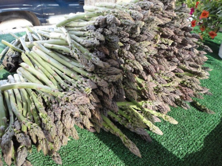 Michigan Grown Asparagus