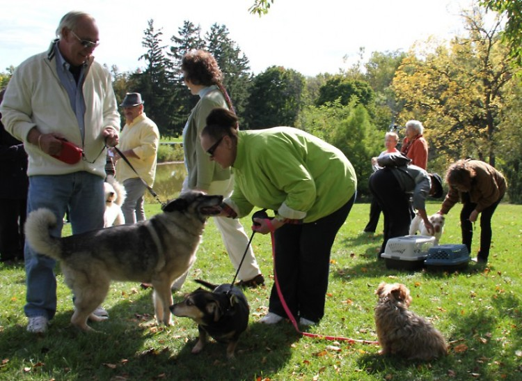 <center><strong>Blessing of the Animals at Dominican Center</strong></center>