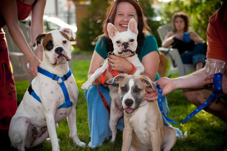 Dogs of all shapes and sizes can be found at the annual BISSELL Blocktail Party.