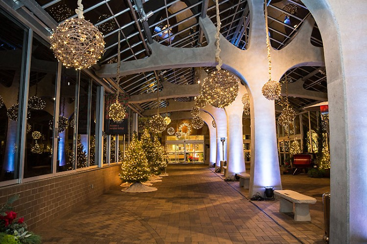 Christmas and Holiday Traditions Around the World at Meijer Gardens