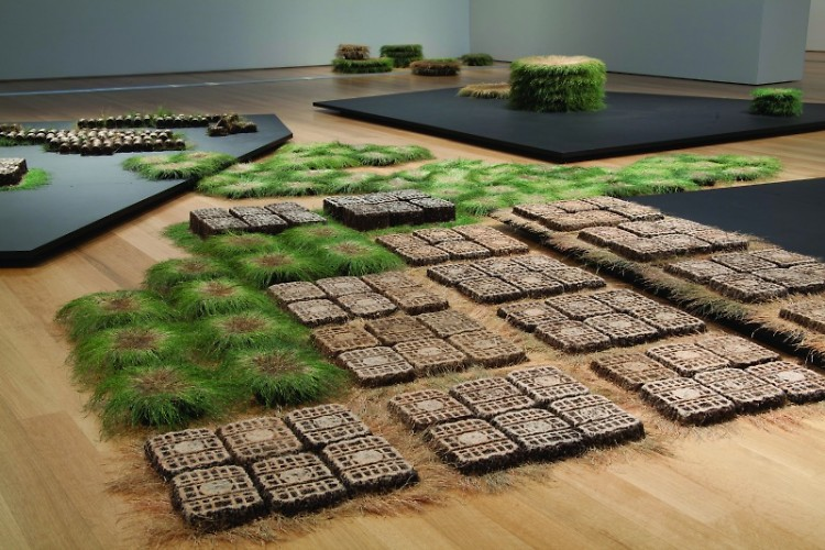 Campell arranged and rearranged each individual piece of sod as if creating a drawing on the floor.