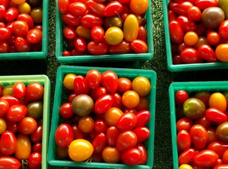 Michigan Tomatos