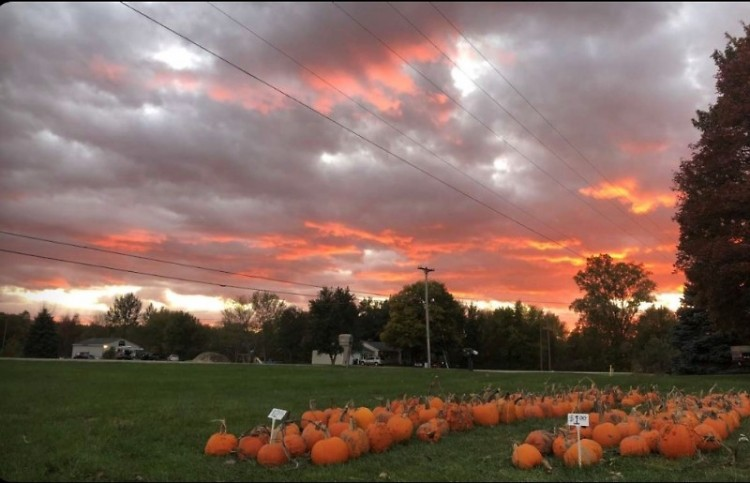 Sunset and pumpkins at Post Family Farm