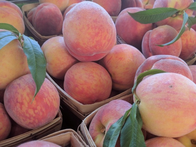 MI Peaches