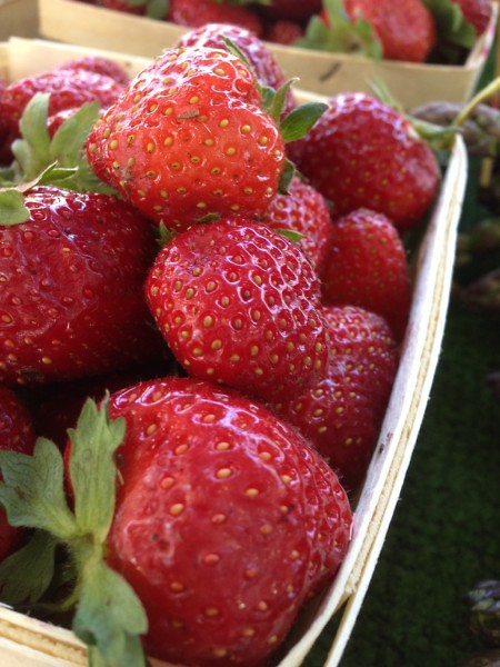 Michigan Grown Strawberries