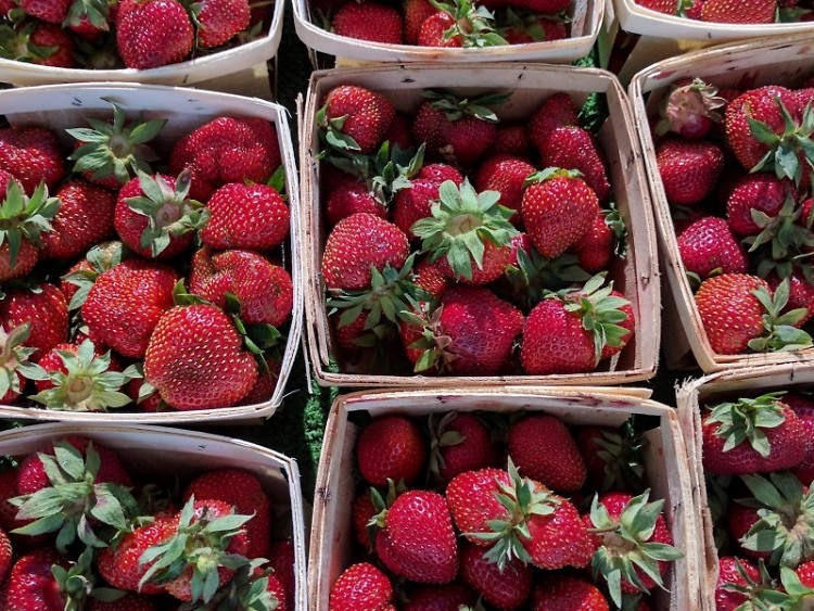 First of the season Strawberries