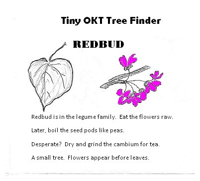 All participants receive a free copy of the Tiny OKT Tree Finder booklet!