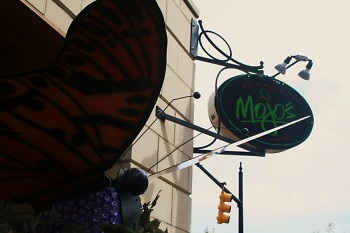 Mojos with Butterfly
