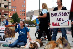 Protestors and their furry loved ones showing their support to end wild-animal abuse.