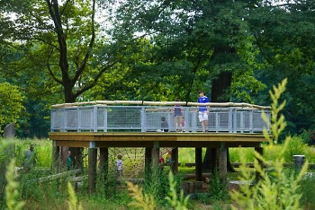 Youth playing around a natural playscape at Ken-O-Sha Park.