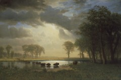 Albert Bierstadt  The Buffalo Trail, about 1867  Oil on canvas  Museum of Fine Arts, Boston. Gift of Martha C. Karolik for the M