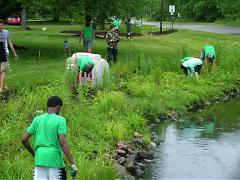 Plaster Creek Stewards working in Cedar Creek