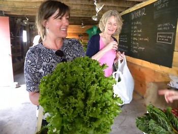 A Green Wagon customer shows off her weekly CSA pickup.