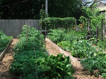 Community raised bed gardens