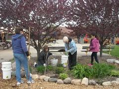 Volunteers cleaning up the memorial garden
