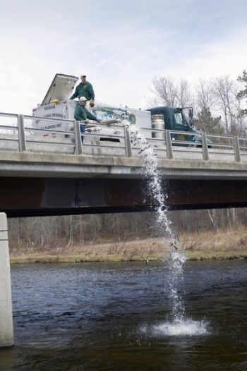 In 2018, the DNR stocked 22.2 million fish in waters across the state.