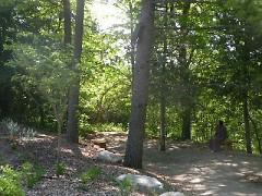 Garden San Damiano Area