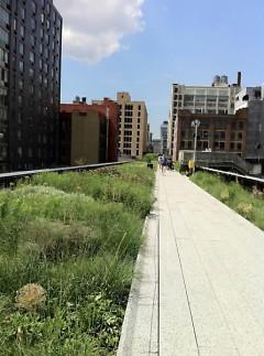 New York City's Hi-Line Park