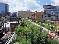 The High Line green space located on the west side of Manhattan in New York City