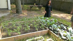 Ms. Mac, an employee of Well House and local musician, is pictured in one of the many urban gardens.