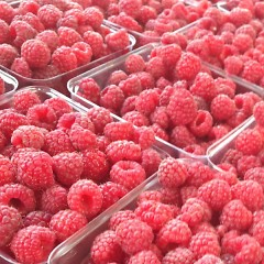 Michigan Raspberries