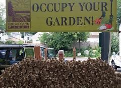 "Brickyard Farms annual ""Wall of Garlic"" from last Saturday"