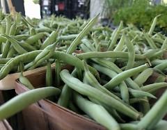 FSFM Green Beans