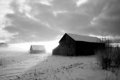 """""""Conkllin Barns"""" by Ken Kolker"""