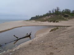 Undeveloped dunes could become more scarce if SB 1130 is passed.