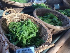 Variety of greens at the Farmers Market