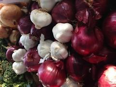 onions & garlic, FSFM