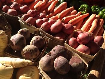 Mix of Michigan produce