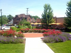 The ICCF's garden next to The Green Well's patio on Cherry St.