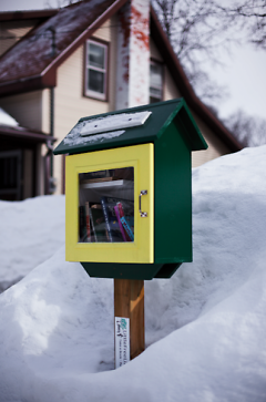 Austin Herman's Little Free Library on Mack Street in Midtown