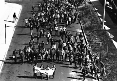 A crowd of participants display a banner at an early Hunger Walk.