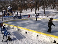 a temporary ice rink at Richmond Park adds layers of activity to a great winter park