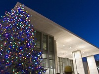 Grand Rapids Art Museum Christmas Tree