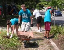 neighborhood work project